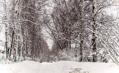 By The Snowy Path. Russia Art Print