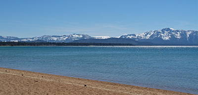 Photograph - By The South Shores Of Lake Tahoe by Michele Myers