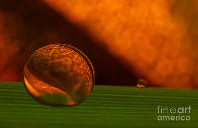 Photograph - C Ribet Orbscape Sphere Of Genesis by C Ribet