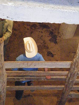 Art Print featuring the photograph Caballero by Brian Boyle