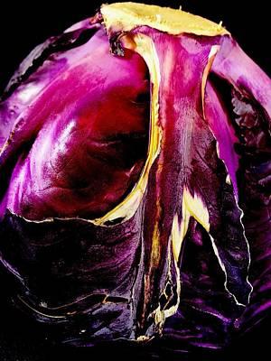 Photograph - Cabbage Purple by Gina  Zhidov
