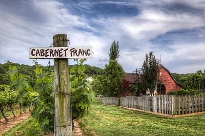 Blue Grapes Photograph - Cabernet by Debra and Dave Vanderlaan