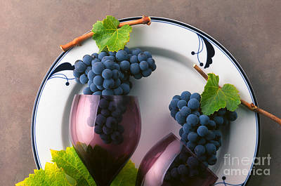 Photograph - Cabernet Grapes And Wine Glasses by Craig Lovell
