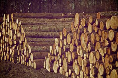 Log Cabins Photograph - Cabin Dream by Odd Jeppesen