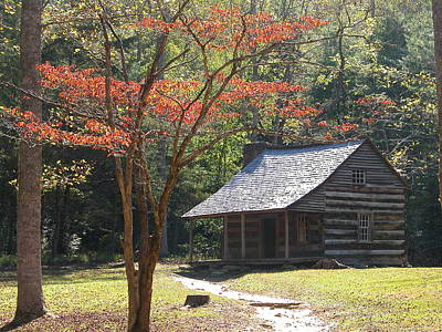 Photograph - Cabin In Cades Cove by Michael Gooch