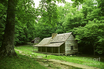 Cabin In The Smokey Mtns Art Print by Teri Brown