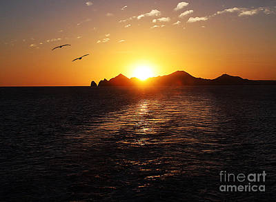 Photograph - Cabo Sunset by Tom Griffithe