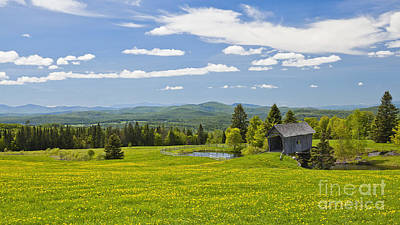 Photograph - Cabot Plains Spring by Alan L Graham