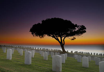 Wave Photograph - Cabrillo National Monument Cemetery by Larry Marshall