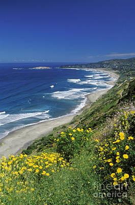 Cachagua Coastline Chile Art Print