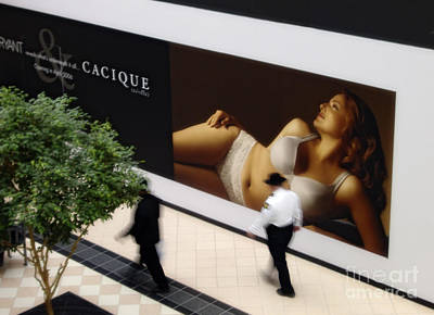 Photograph - Cacique by Tom Brickhouse