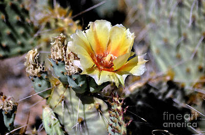 Cactus Artwork  Art Print by Juls Adams