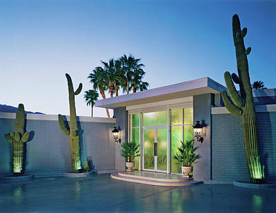 Cactus At Building Entrance At Dusk Art Print