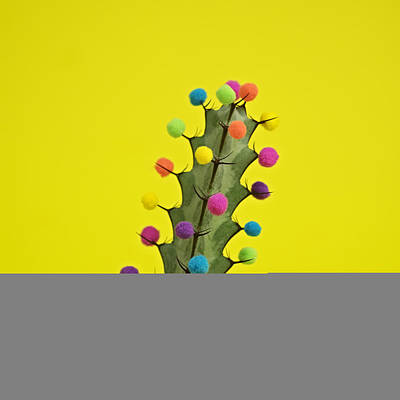 Photograph - Cactus Decorated With Puffballs by Juj Winn