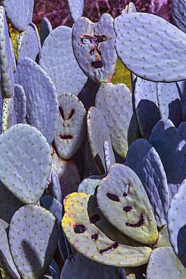 Cactaceae Photograph - Cactus Faces by Garry Gay