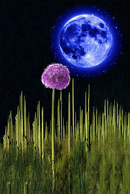 Cactus Flower Moon Original by Bruce Iorio