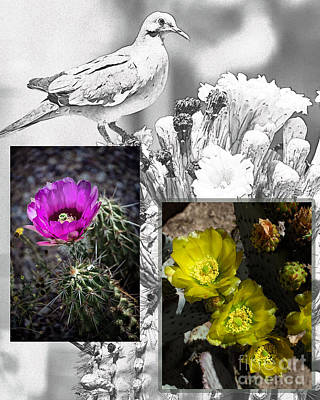 Cactus Flowers 01 Art Print by David Mendoza