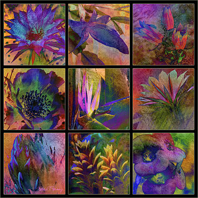Digital Art - Cactus Flowers by Barbara Berney