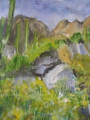 Cactus In Scottsdale Art Print