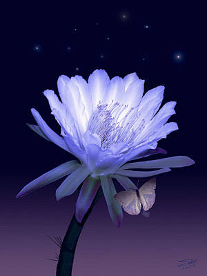 Painting - Cactus Night Flower by IM Spadecaller