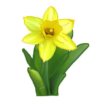 Cactus Plant Green And Yellow Elegant Flower Created By  Navinjoshi Art Print