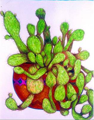 Drawing - Cactus by Rae Chichilnitsky