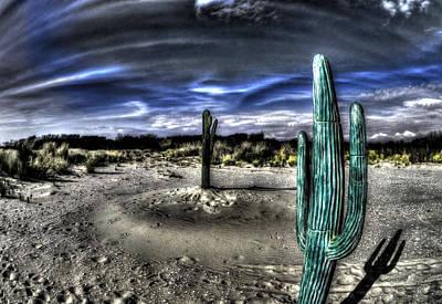 Cactus Under Blue Sky Original