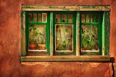 Adobe Photograph - Cactus Window by Keith Berr