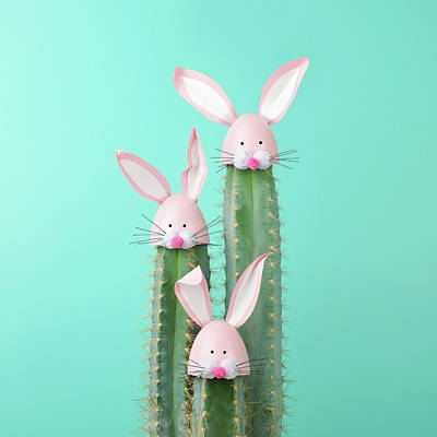 Green Color Photograph - Cactus With Easter Rabbit Decorations by Juj Winn
