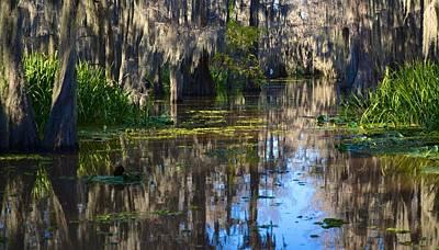 Photograph - Caddo Lake 23 by Ricardo J Ruiz de Porras