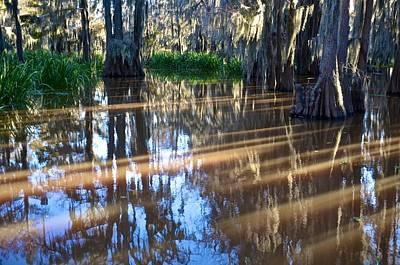 Photograph - Caddo Lake 28 by Ricardo J Ruiz de Porras