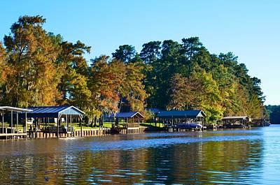 Photograph - Caddo Lake 36 by Ricardo J Ruiz de Porras