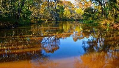 Photograph - Caddo Lake 43 by Ricardo J Ruiz de Porras