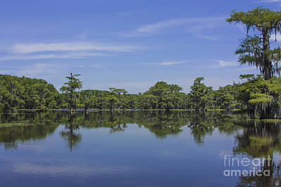 Photograph - Caddo Reflections by David Cutts