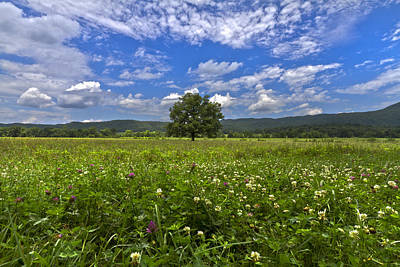 Cades Cove In The Summer Art Print by Debra and Dave Vanderlaan