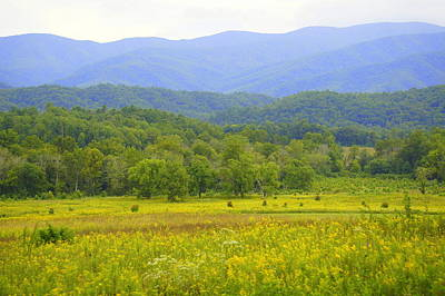 Photograph - Cades Cove by Laurie Perry