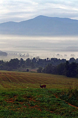 Cades Cove - Misty Morning Art Print by George Bostian