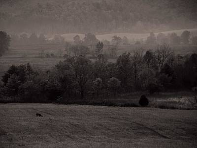Cades Cove Morning Art Print by Dan Sproul