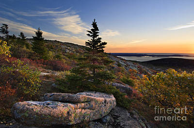 Cadilac Photograph - Cadillac Mountain Sunrise - D003670 by Daniel Dempster