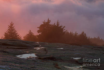 Photograph - Cadillac Mountain Sunset by Chris Scroggins