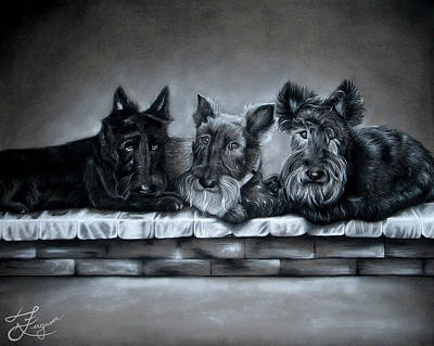 Scotties Drawing - Cady Maggie And Dewey by Alaina Ferguson