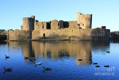 Print featuring the photograph Caerphilly Castle by Vicki Spindler