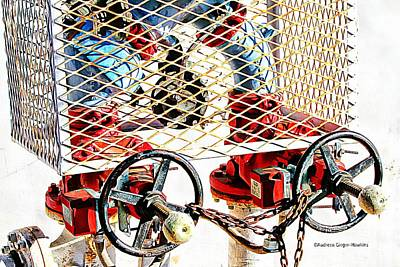 Photograph - Caged Industrial Valves by Audreen Gieger