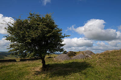 Farmscapes Photograph - Cairn D On Carbane West, Loughcrew by Panoramic Images