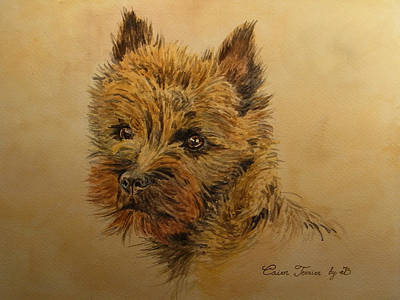 Watercolor Pet Portraits Painting - Cairn Terrier Dog by Juan  Bosco