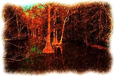 Photograph - Cajun Swamp by Ronald Olivier