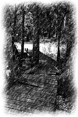Photograph - Cajun Walkway by Ronald Olivier