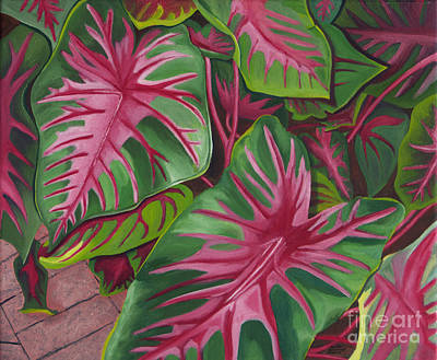 Painting - Caladiums by Annette M Stevenson