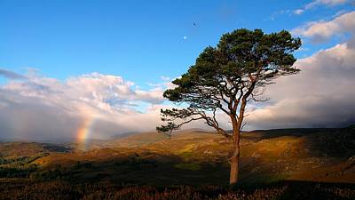 Photograph - Caledonian Colours by Macrae Images