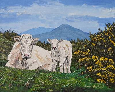 Painting - Calf And Mother Connemara Ireland by Diana Shephard